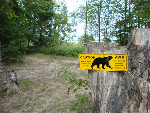 Beausoleil Island: Caution - bears in area. Travel with caution.