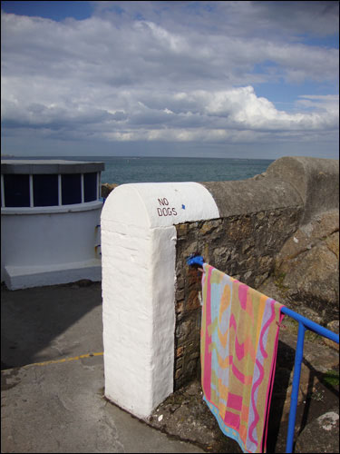 the Forty Foot, Sandycove