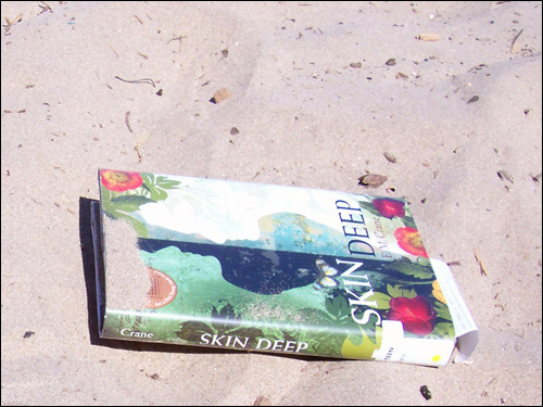 Skin Deep by E.M. Crane on the beach, July 5, 2008