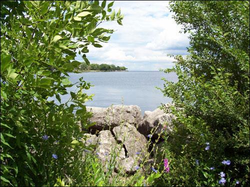 Lake Ontario vista