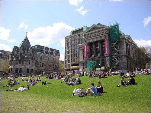 McGill campus in the sun