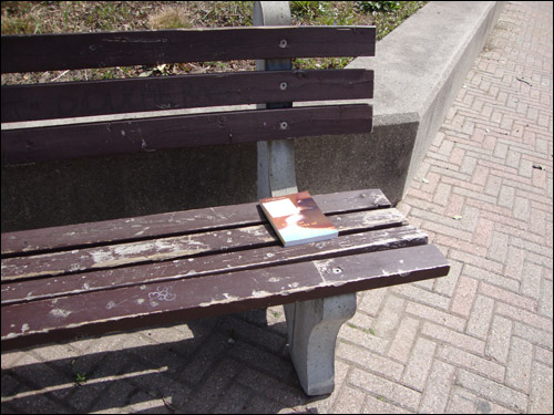 The Lighter Side of Life and Death on a bench outside the public library