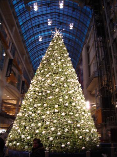 Swarovski Christmas tree, Eaton Centr