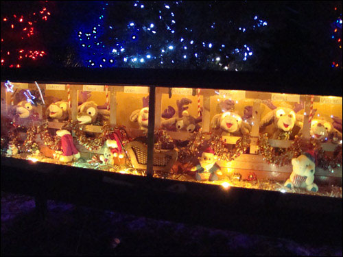 The Singleton's Christmas Lights Display 2011