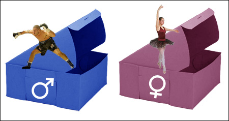 Pink Box/Blue Box: Gender Expectations