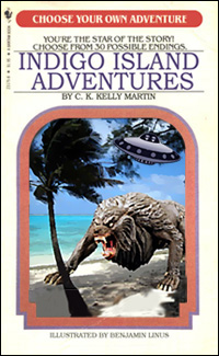 Indigo Island Adventures mock cover