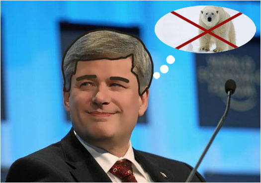 Stephen Harper must figure the polar bears are Liberal or NDP voters. What else could explain his disdain for the gorgeous northern animals ?