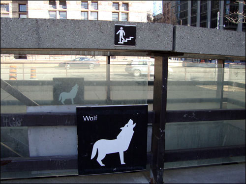 Nathan Phillips Square wolf sign